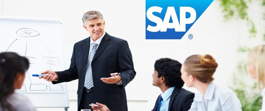 Successful SAP Project Manager